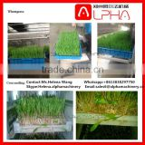 Factory price grass seeds planting machine machine for grow grass hydroponic growing systems