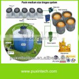 Low cost and big size PUXIN biogas plant for electricity generation