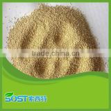 alibaba china free sample yeast powder protein animal feed additives