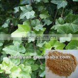 natural Ivy Leaf Extract