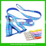 Good Quality Nylon Dog Leashes