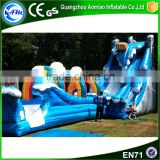 Factory sale giant inflatable pool slide for adult                                                                                                         Supplier's Choice