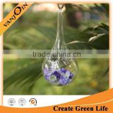 Decoration Hanging Glass Vase Teardrop Globe Terrarium