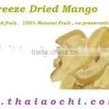 Freeze dried Mango fruit slices from Thailand