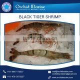 Wholesale Distributor of Natural and Organic Black Tiger Shrimps for Bulk Supply
