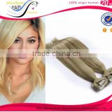 Hot selling Top quality clip in hair extension 100% brazilian virgin hair indian clip in hair extensions