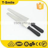 Professional Cake Decorating Tools with Black Plastic Handle and Flexible Resistant Silver Blade