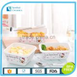 Airtight ceramic food container with lock lid