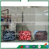 China Berry Fluidize IQF Freezer