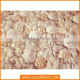Paper flower wall wedding backdrop