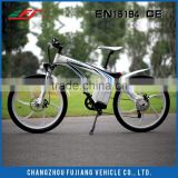 Hot sale chain drive electric bicycle 500w