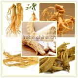Factory direct supply with competitive price 100% Natural 80% American Ginseng Extract Ginsenosides
