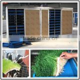 energy saving barley sprouting machine /animal fodder making machine/bean sprouting makeing machine