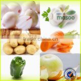 wholesale mesh bags onion /china origin onion cold storage for fresh yellow onion exporter in China