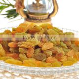 Dried Golden Sweet Raisin