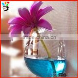 Shaped Home Accessories Plant Terrarium Container Wall Hanging Glass Ecological Landscape Bottle