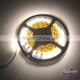 12V SMD 5050 warm white high cri 90 led strip with CE approval