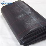 black PP woven fabric polypropylene ground cover net
