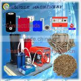 Hot sale Biomass gasifier power plant/ Small biomass gasification power generator                                                                         Quality Choice