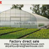 Commercial used steel frame single span greenhouse for sale                                                                         Quality Choice