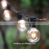 Black Wire Clear Globe String Lights Set of 25 G40 Bulbs Indoor / Outdoor