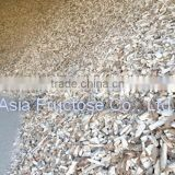Thailand TAPIOCA CHIP/CASSAVA CHIP for Animal feed
