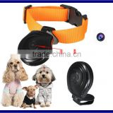 Digital Pet Collar Cam Camera Mini Video Recorder Tracks Recorder,hd mini digital pet camera pet collar video camera
