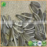 Bird Seed Food Product Wholesale sunflower Seeds, Chinese Sunflower Seeds