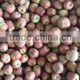 fresh huaniu apple