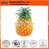 Sells high quality pineapple extract canned pineapple chunks