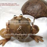 coconut shell frog lamp