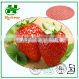 Organic Strawberry Powder