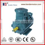 Selling Well All Over The World Explosion Proof 3 Phase Induction Motor With CCC Certification