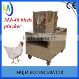 Poultry equipment for birds pigeon slaughterhouse 40 Model birds quail pigeon plucker machine