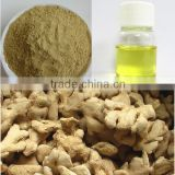 Ginger oil/Certified Ginger Essential oil/Natural Pure Essential Ginger oil In Bulk Quantity