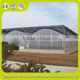 modern plastic film greenhouse with steel skeleton and hot drip galvanized bolt for vegetable and flower grow for hot sale