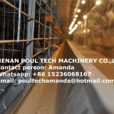 Côte d'Ivoire Chicken Farming H Frame Full Automatic Layer Chicken Cage & Hen Cage Ued in Chicken House