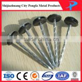 Spiral nail/Twist shank galvanized roofing nails with plastic washer/umbrella head nail factory