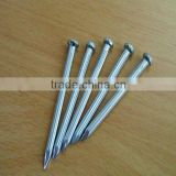 Concrete nails with vertical shank( competitive price )
