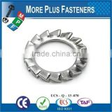 Made in Taiwan Passivated Zinc Plated External Tooth Lock Serrated Washer Stainless Steel Carbon Steel