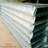 Vegetable conveying chain plate conveyor belt