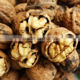 Health food fresh chinese walnuts for sale