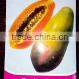 2016 Hybrid F1 High Yield Red Lady Papaya Seeds For Growing Thaiwan