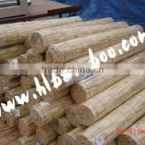 Natural Reed Screen