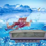 Seafood display-series bitzer refrigeration compressor/refrigeration compressor sizes/thermo king refrigeration unit