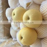 buying online in china custom canned snow pears