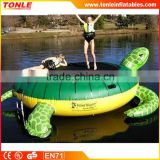 new design Top quality sea turtle inflatable aqua trampoline, children inflatable water slides for sale
