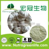Factory Outlet invigorating stomach Allium sativum L garlic extract pill capsule powder 10:1 allicin food grade