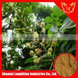 very hot sale horse chestnut extract powder/Escin 20% 40% 98% HPLC professional manufacturer