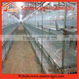 Online shoping day old broiler chicks for sale / Battery Layer Broiler Chicken Cage